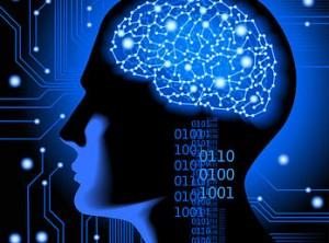brain responds to stress